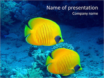 Yellow Exotic Fish PowerPoint Template