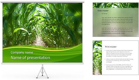 Récolte de maïs Modèles des présentations  PowerPoint