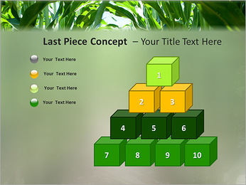Récolte de maïs Modèles des présentations  PowerPoint - Diapositives 11