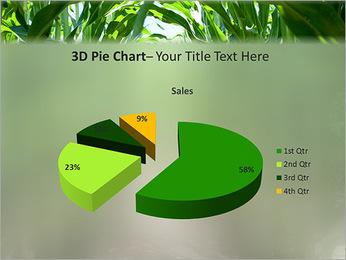 Récolte de maïs Modèles des présentations  PowerPoint - Diapositives 15