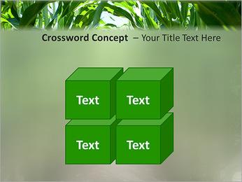 Récolte de maïs Modèles des présentations  PowerPoint - Diapositives 19