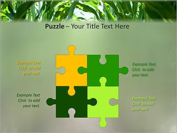 Récolte de maïs Modèles des présentations  PowerPoint - Diapositives 23