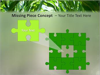 Récolte de maïs Modèles des présentations  PowerPoint - Diapositives 25