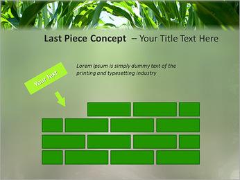 Récolte de maïs Modèles des présentations  PowerPoint - Diapositives 26