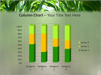 Récolte de maïs Modèles des présentations  PowerPoint - Diapositives 30