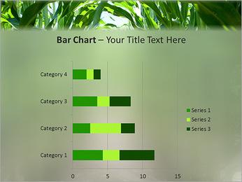 Récolte de maïs Modèles des présentations  PowerPoint - Diapositives 32