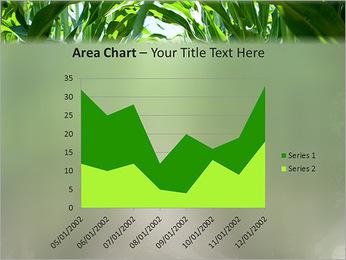 Récolte de maïs Modèles des présentations  PowerPoint - Diapositives 33