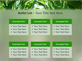 Récolte de maïs Modèles des présentations  PowerPoint - Diapositives 36