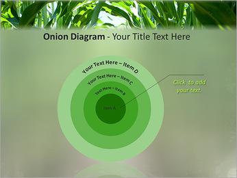 Récolte de maïs Modèles des présentations  PowerPoint - Diapositives 41