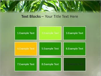 Récolte de maïs Modèles des présentations  PowerPoint - Diapositives 48