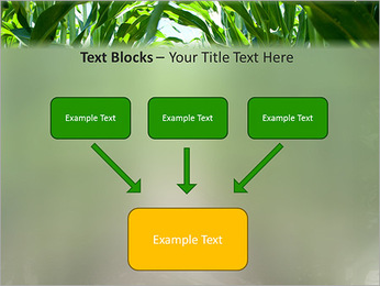 Récolte de maïs Modèles des présentations  PowerPoint - Diapositives 50