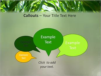 Récolte de maïs Modèles des présentations  PowerPoint - Diapositives 53