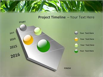 Récolte de maïs Modèles des présentations  PowerPoint - Diapositives 6