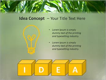 Récolte de maïs Modèles des présentations  PowerPoint - Diapositives 60