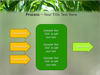 Récolte de maïs Modèles des présentations  PowerPoint - Diapositives 65
