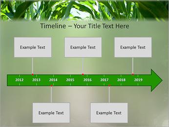 Récolte de maïs Modèles des présentations  PowerPoint - Diapositives 8