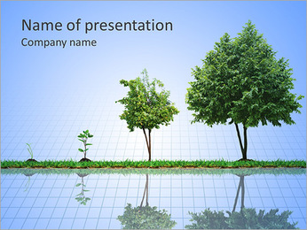 Growth Of Tree PowerPoint Template