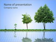 Growth Of Tree PowerPoint Templates