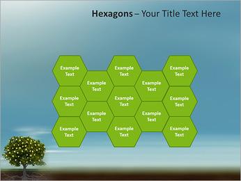 Fruit Tree Modèles des présentations  PowerPoint - Diapositives 24