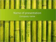 Green Bamboo PowerPoint Templates