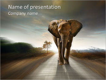 Elephant On The Road PowerPoint Template