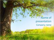 Green Forest Sjablonen PowerPoint presentaties