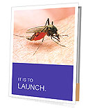 Mosquito Bite Presentation Folder