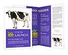 Black And White Cow Brochure Templates