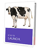 Black And White Cow Presentation Folder