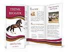 Nice Horse Brochure Templates