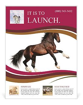 Nice Horse Flyer Template & Design ID 0000004423 - SmileTemplates.com