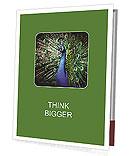 Bright Peacock Presentation Folder