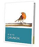 Humming Bird Presentation Folder