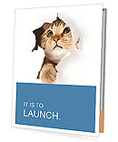 Cat Hides Presentation Folder