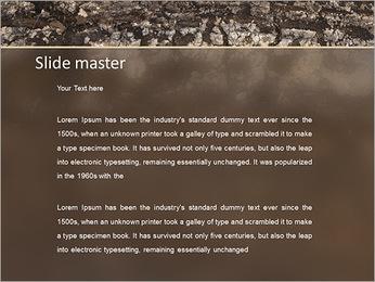 Herbe et le sol Modèles des présentations  PowerPoint - Diapositives 2
