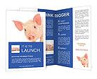 Pinky Piggy Brochure Templates
