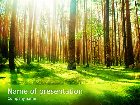 trees in forest powerpoint template backgrounds google slides