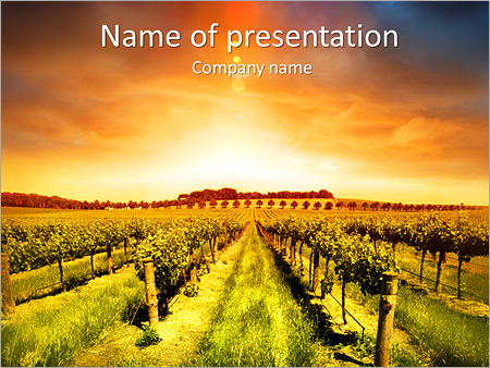 Grapes plantation powerpoint template backgrounds id 0000004624 grapes plantation powerpoint templates toneelgroepblik Gallery