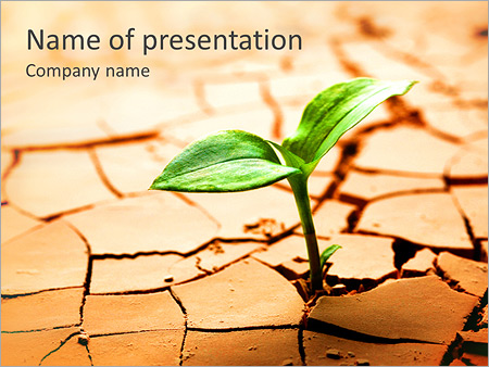 Young plant sprouting powerpoint templates.