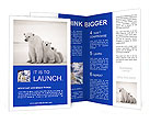 White Bear Brochure Templates