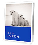 White Bear Presentation Folder