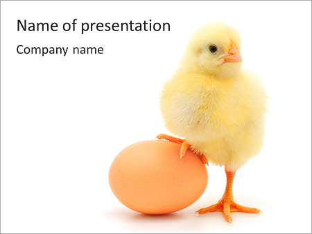 new powerpoint templates
