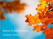 Autumn powerpoint template smiletemplates autumn leaves powerpoint templates toneelgroepblik Choice Image