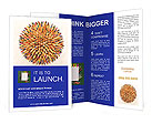 Collection Of Pencils Brochure Templates