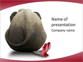 Grey Elephant PowerPoint Template