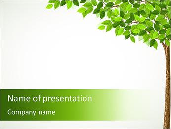 Dessin d'arbre Modèles des présentations  PowerPoint - Diapositives 1
