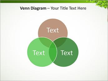 Dessin d'arbre Modèles des présentations  PowerPoint - Diapositives 13