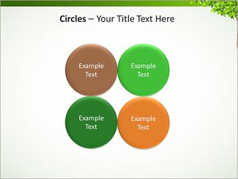 Dessin d'arbre Modèles des présentations  PowerPoint - Diapositives 18