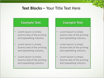 Dessin d'arbre Modèles des présentations  PowerPoint - Diapositives 37