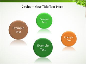 Dessin d'arbre Modèles des présentations  PowerPoint - Diapositives 57